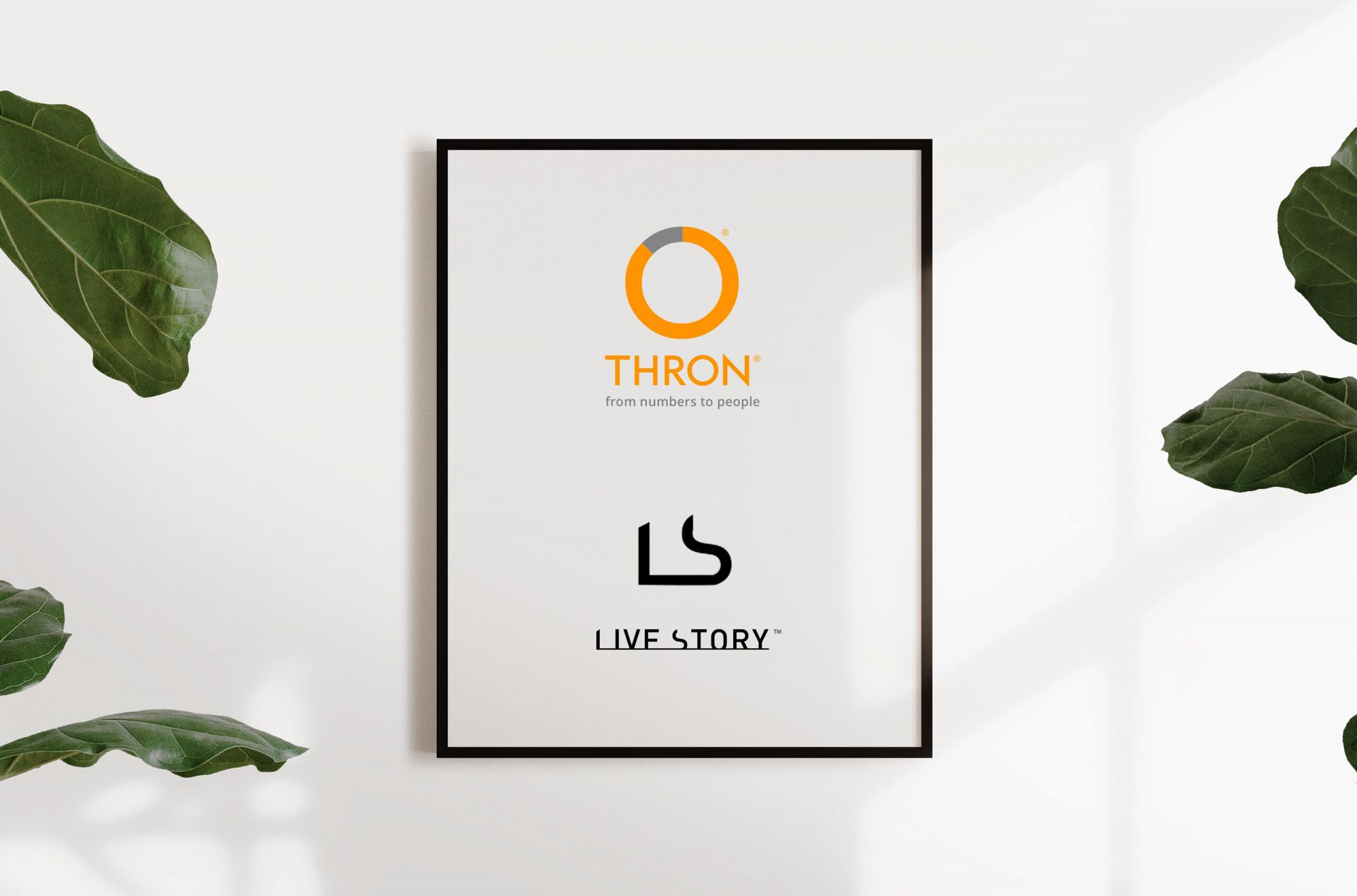 Live Story is integrated with THRON, the intelligent Digital Asset Manager platform